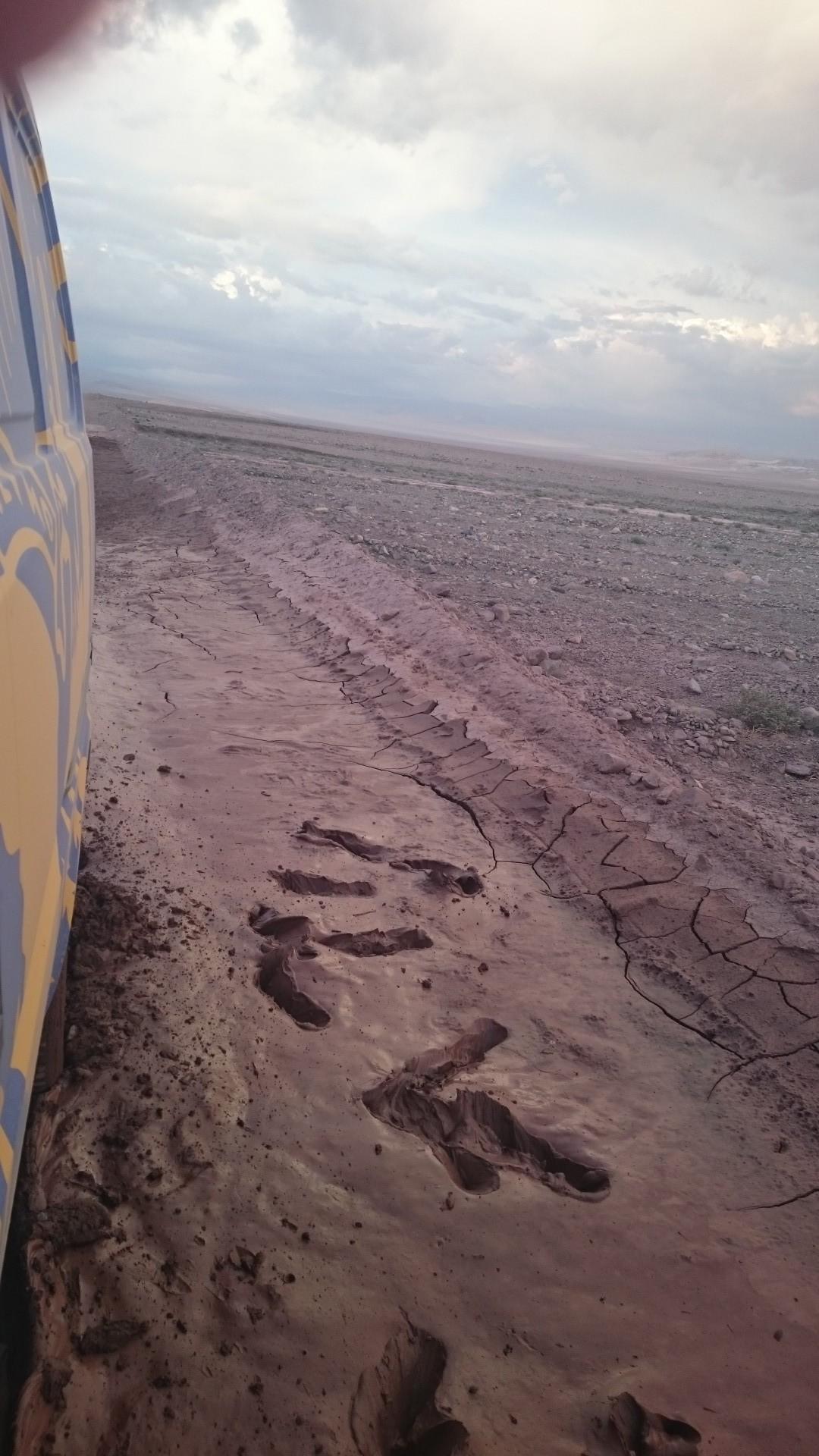 Ramone meets Atacaman mud